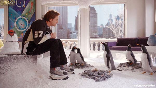 Mr Popper s Penguins